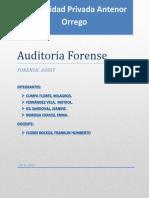 AUDITORIA FORENSE presentacion