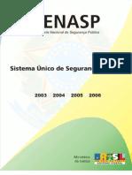 relat_implantação SUSP 2007
