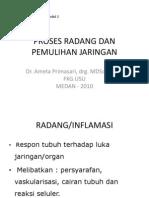 RADANG AKut dan kronis (inflammation)