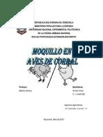 Informe Del Moquillo en Aves de Corral Arrollo