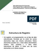 Estructura de Registro