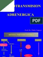 4274-neurotrasmison_adrenergica_1PARA_ALUMNOS