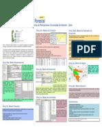 Silvia PDF Descripcion