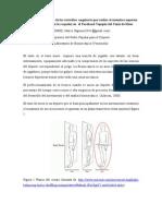 Descripción subjetiva de las variables  angulares que realiza el miembro superior ejecutor (mano con la raqueta) en  el Forehand Topspin del Tenis de Mesa.doc