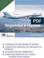 Seguridad e Higiene_2013,(2)