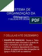 SISTEMA DE ORGANIZAÇÃO DA IBMaanaim