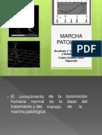 Exposicion Marcha Patologica 2014