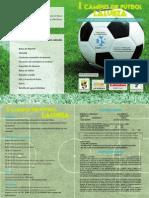 diptico_lalueza14.pdf