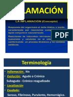 3inflamacin-120828202633-phpapp02
