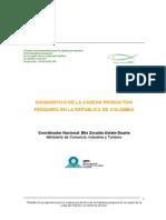 24117_DiagnsticoNacionaldeColombia