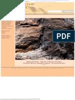 Madera Petrificada Del Valle Del Ñirihuau - Museo Virtual de Fósiles Patagónicos