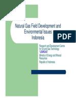 2Natural Gas Field Development