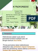 Kelompok 4 - Elektroforesis