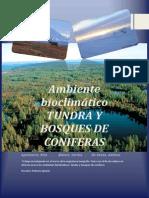 Bioma Tundra y Bosques de Coniferask