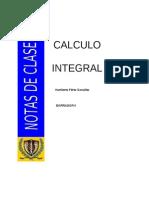 Primer capitulo-Notas de clase.pdf