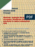 2.4Globalizarea -Tinte de Analiza Coordonate de CEI