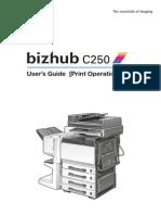 Bizhub c250 Print Phase2-5 1-0-0 En