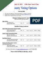 2014July_VotingOptions