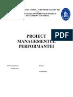 Managementul Performantei - Proiect