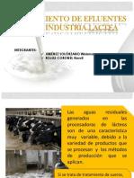 Depuración de Aguas Residuales de La Industria De