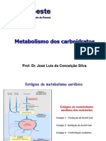 Aula 07 Metabolismo Dos Carboidratos