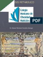 analisis metabolico