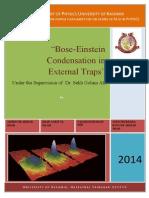 Bose Einstein Condensation in External Traps
