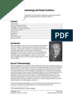 Heidegger's Phenomenology and Human Excellence