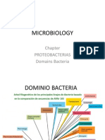 Proteo Bacterias