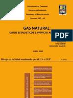 Expo Final Gas