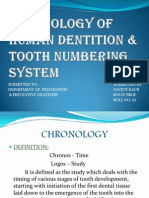Chronology of Human Dentition & Tooth Numbering System