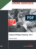 C8 BI Report Authoring 1