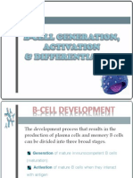 Immunogenetics- B Cell Development
