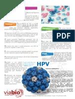 Folder Hpv via Bio Pagina HPV