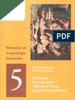 Capote cerámica tipo Peñaflor.pdf