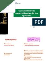 Caracteristicas epitelios (1).pdf
