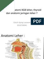Anatomi KGB Leher, Thyroid Dan Anatomi