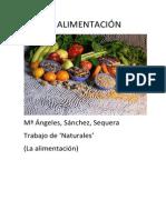 TRABAJO DE NATURALES.docx