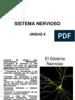 Sistema Nervioso Unidad 9