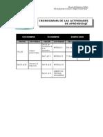 CRONOGRAMA DE ACTIVIDADES ML