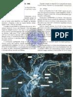 НАТО напади на РС