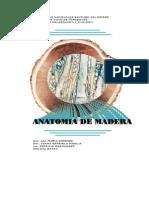 Sd 1 Anatomia de Madera