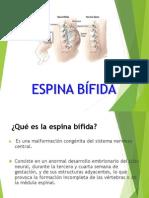 Espina Bifida Presentacion2