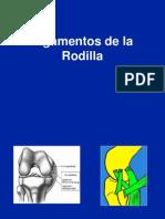 05- A- Ligamentos de La Rodilla