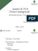 TGA - Teoria Contingencial - Mod