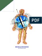 Biomagnetismo (Lorenzo Arroyo)