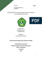 Refleksi Kasus OMA Stadium Kataralis