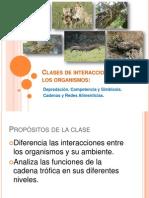 Septima Clase de Ecología 2014-I