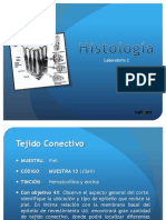histologialaboratorio2-111004174120-phpapp02