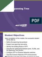 Module (Spanning Tree)
